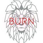 Signature BURN